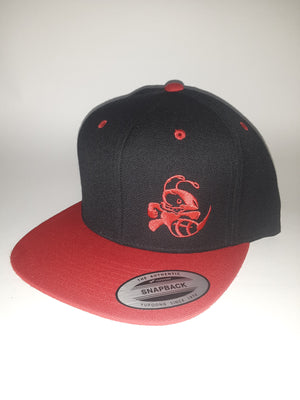 Snap Back Two Tone Flat Bill Buzzz or Crank