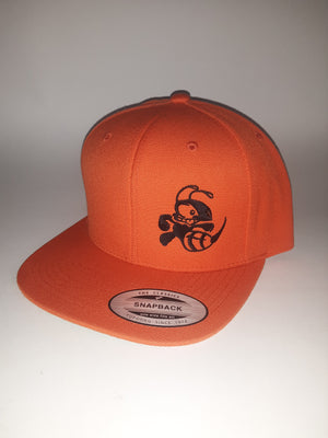 Discraft Snap Back Flat Bill Buzzz