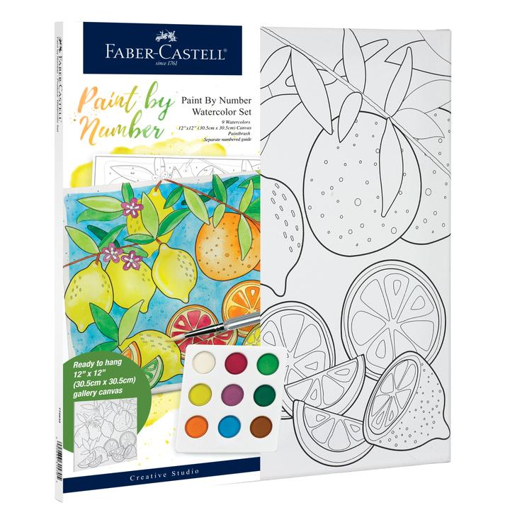 Faber Castell Watercolor Paint by Number: Produce