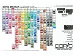COPIC Hand Painted Color Chart 358 Color