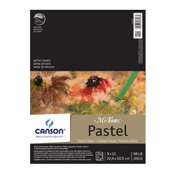 Canson Mi-Teintes Paper Pad - 24 sheets Assorted Earth Tones 9X12