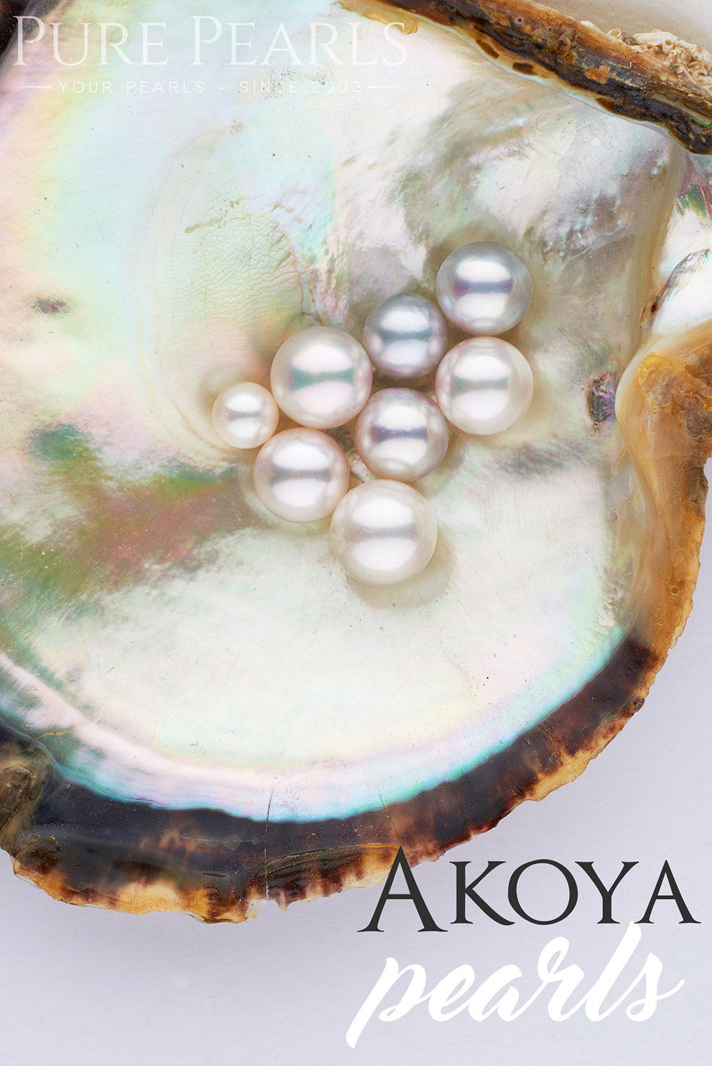 Akoya Pearl Buying Guide