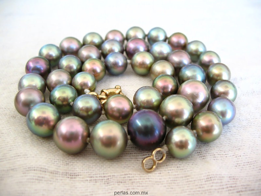 The Bocachibampo Sea of Cortez Pearl Necklace