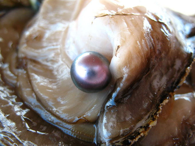 How Do Pearls Get Their Color?