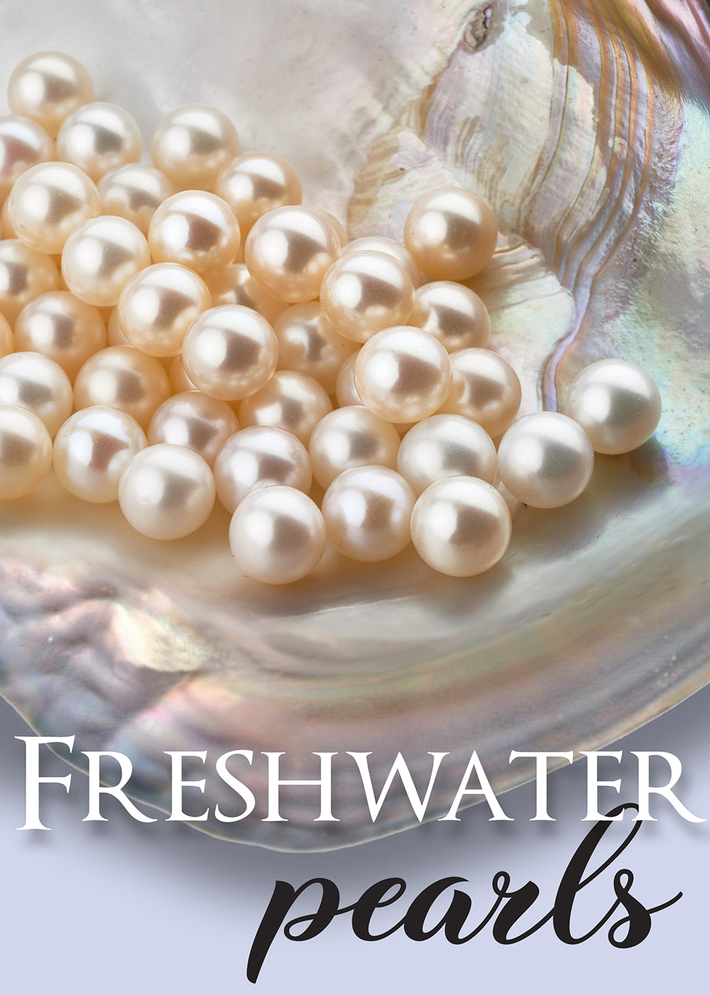 Freshwater Pearl Value