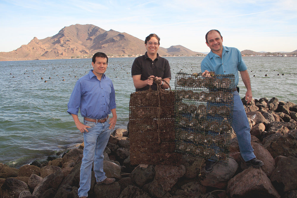 Douglas McLaurin and Partners at Sea of Cortez Pearl Farm