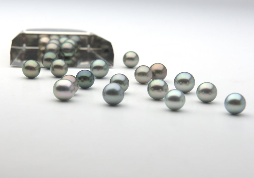 Silver-Blue Loose Tahitian Pearls