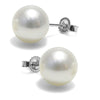 White Freshwater Pearl Earrings, 10.5-11.0mm, 14K White Gold Version