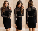 Black Cut Out Zipper High Neck Long Sleeve Mini Dress
