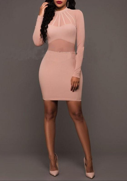 Pink Patchwork Grenadine Band Collar See-through Zipper Bodycon Club Mini Dress