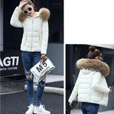 Rice White Patchwork Fur Hooded Zipper Long Sleeve Casual Coat