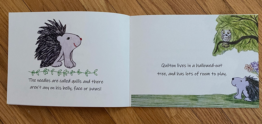 Children's Book - Quilton Finds A Special Friend