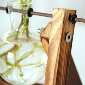 Creative Hydroponic Plant Vase with Glass Bottle and Wooden Frame - AtHomeWithZane