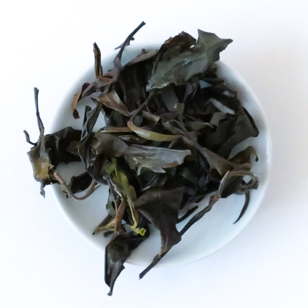 2019 Yiwu Guoyoulin White Tea