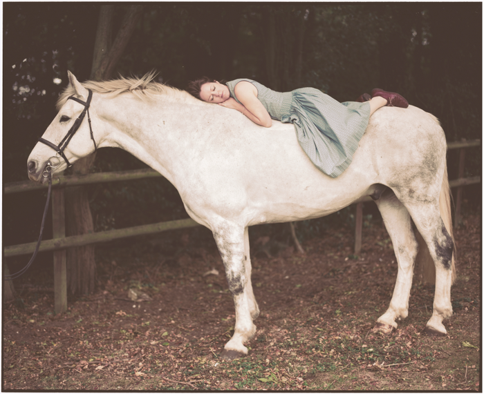 Emily and the White Horse