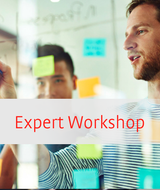 Expert Workshop