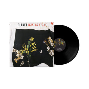 Waking Eight/Maybe Someday LP - Merch Jungle