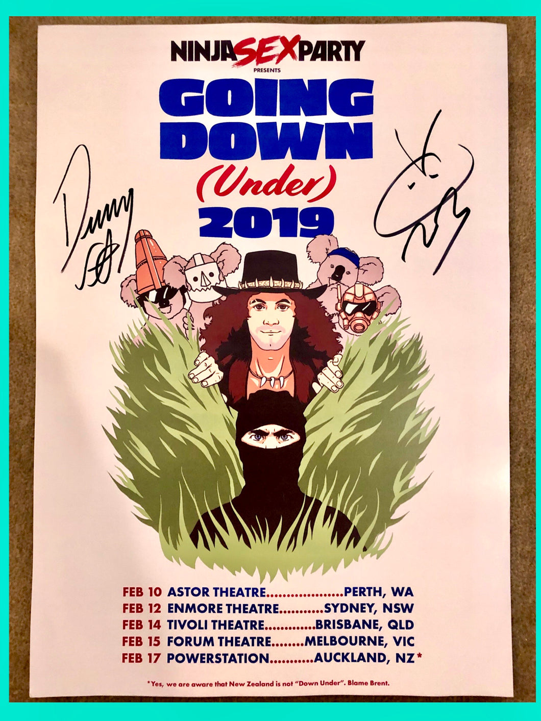 Ninja Sex Party - Signed Tour Poster