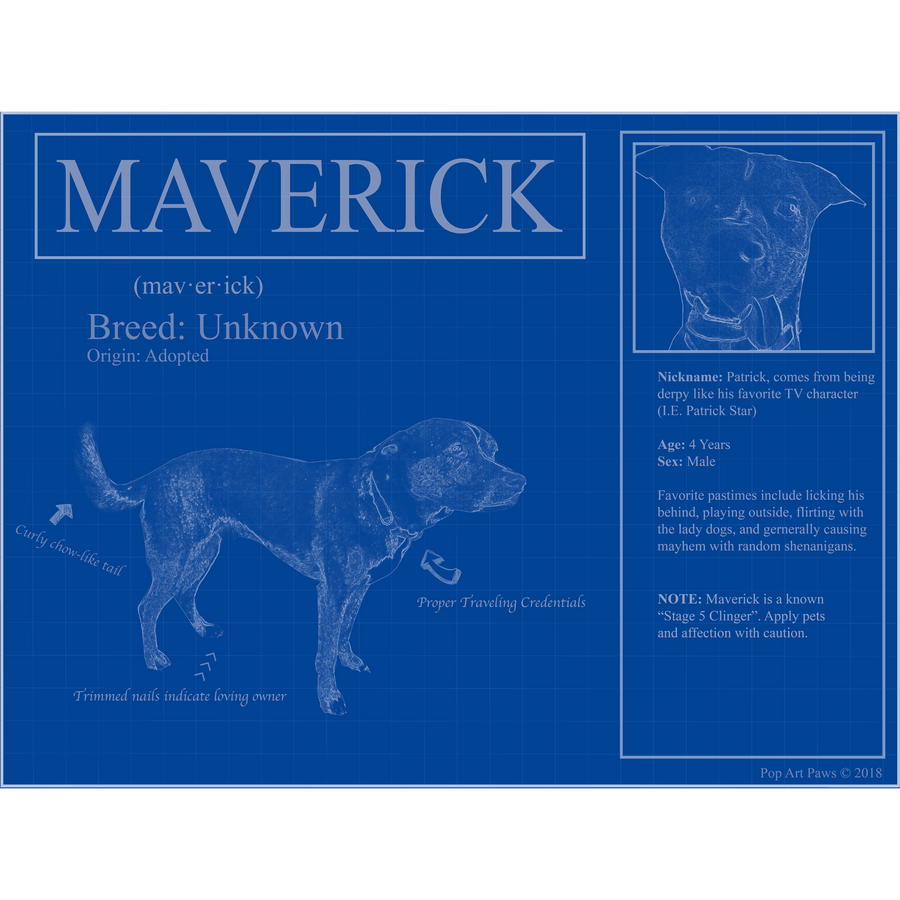 Custom pet blueprints put your dog on blueprints rep your pet personalized blueprints of your pet malvernweather Image collections