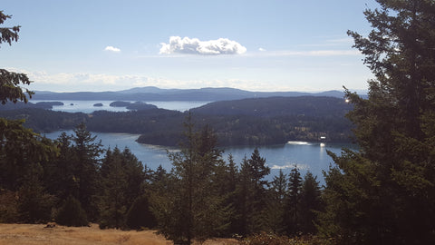 View from Turtelback Mountain, Orcas Island