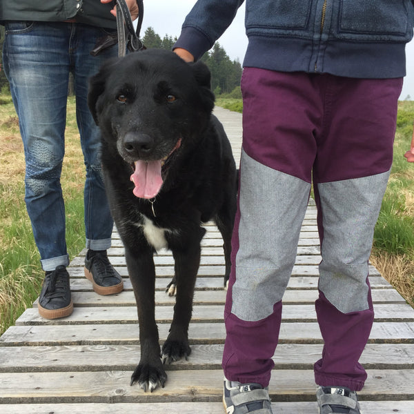 Mother and child standing on boardwalk with dog. Child is wearing Jackalo pants (the Jax in Berry), mother is wearing repaired jeans.