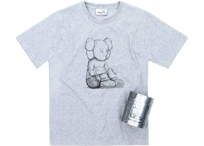 Kaws Seeing/Watching Companion Canned Tee Grey