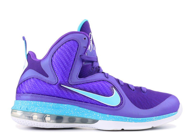 "NIKE LEBRON 9 ""SUMMIT LAKE HORNETS"""