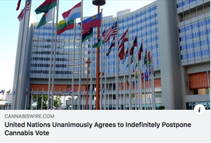 Why the UN's decision to unanimously postpone the Cannabis vote is a huge blow!