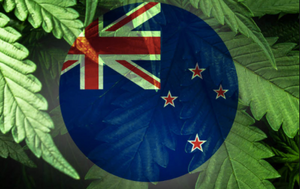 Now that's what I call a referendum! New Zealand's vote on Cannabis and End of Life Choice!