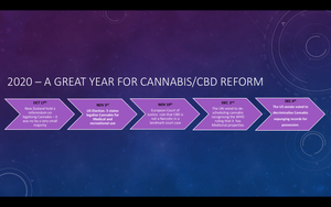 What a year its been for Cannabis/CBD reform! Heres how it has played out......