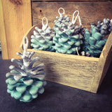 Scented Pine Cones - Winter Woodland