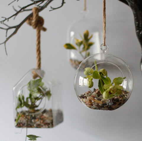 Hanging Glass Terrarium / Tealight Holder