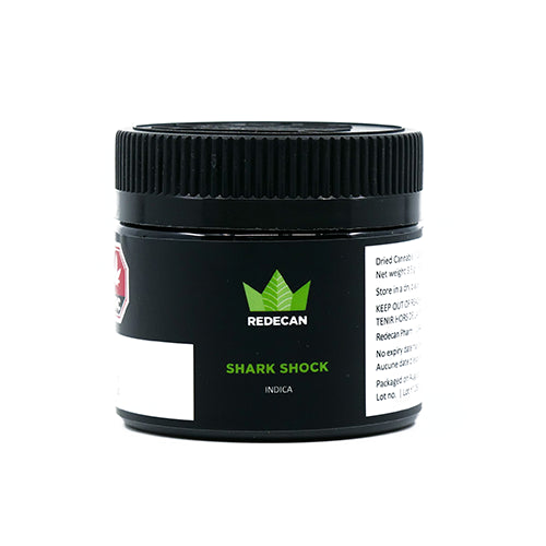 CBD SHARK SHOCK