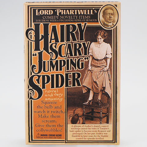 Lord Phartwell's Hairy Scary Jumping Spider