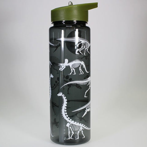 700ml Dinosaur Skeleton Drink Bottle