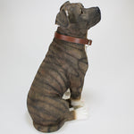 Brindle Staffie - Dog Studies by Leonardo
