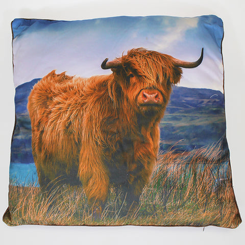 Highland Cow - Cushion