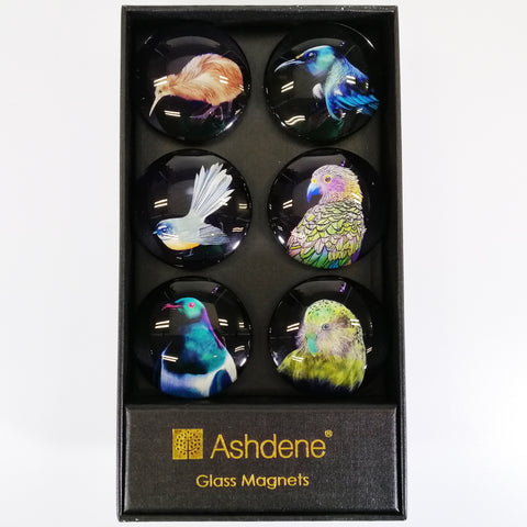 "Glass Magnets - ""Majestic Birds of Aotearoa"" - Set of 6"