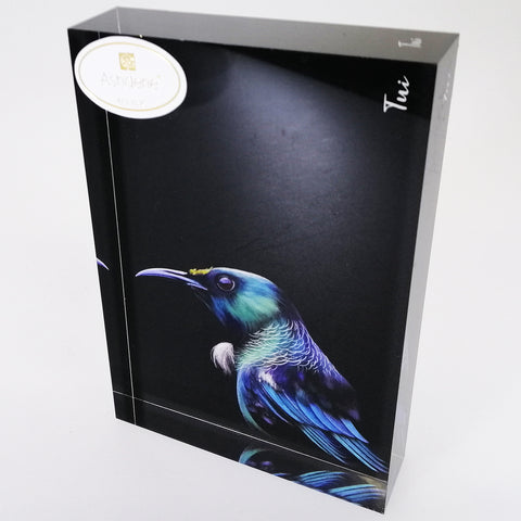 "Acrylic Block Art - ""Tui"""