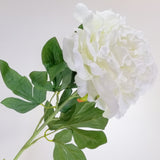Artificial Flowers - Peony Stem - Shades of Cream
