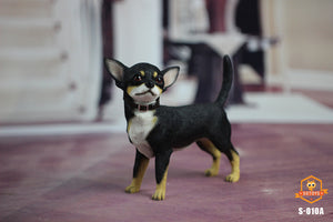 【預訂日期至30-Jul-19】SGTOYS 1/6 Simulated Animal Chihuahua Dog black Figure