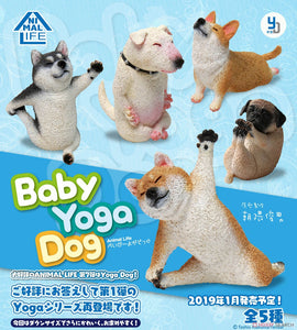 【已截訂】Yendar Animal Life Baby Yoga Dog [8個入]