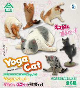 【已截訂】Yendar Animal Life Baby Yoga Cat [8個入]