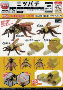 【預訂日期至07-Jul-20】EC Capsule Honey Bee [全5種]