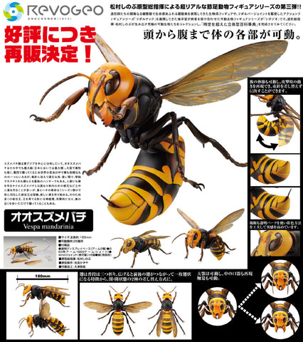 【預訂日期至17-May-21】Kaiyodo REVO GEO Vespa mandarinia Action Figure [再販]