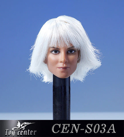 【已截訂】Toy Center 1/6 CEN-S03A European model of female head with hair transplant