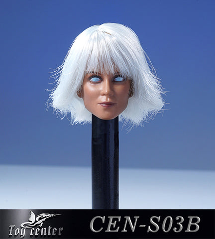 【已截訂】Toy Center 1/6 CEN-S03B European model of female head with hair transplant