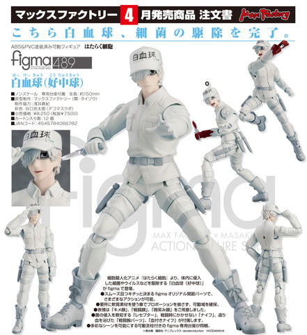 【已截訂】Max Factory figma White blood cell (Neutrophil) Action Figure
