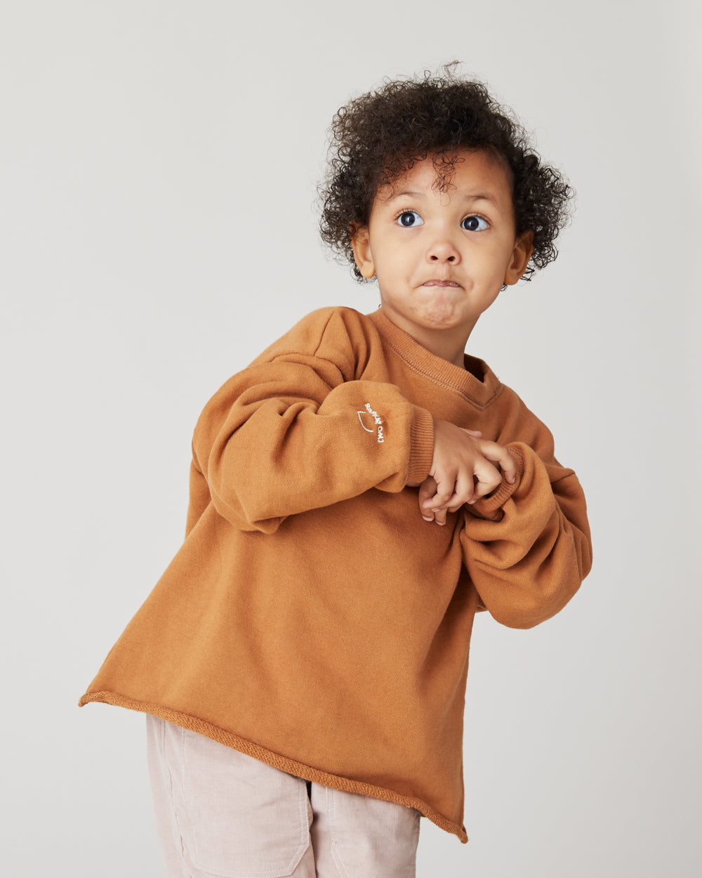 Ellis Crewneck Sweatshirt in Camel