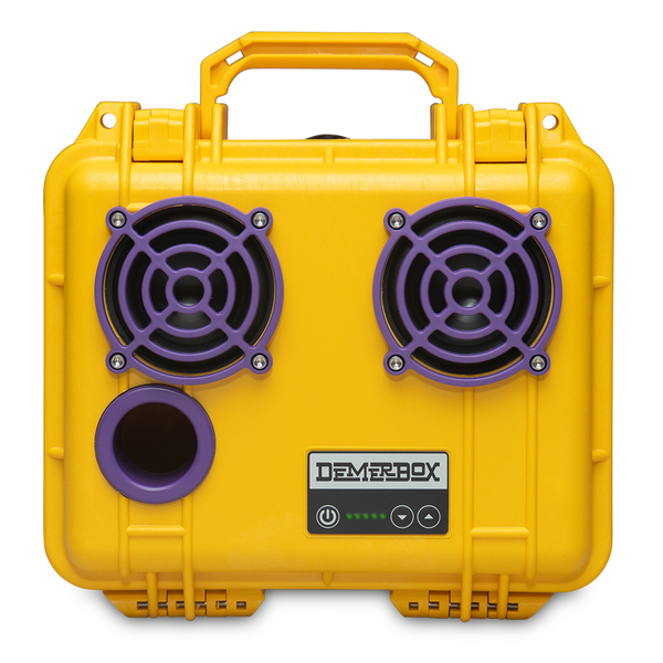 Game Day Yellow & Purple DB2 Speaker